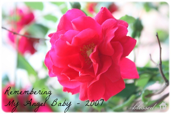 Remembering My Angel Baby    | My Blessed Life™