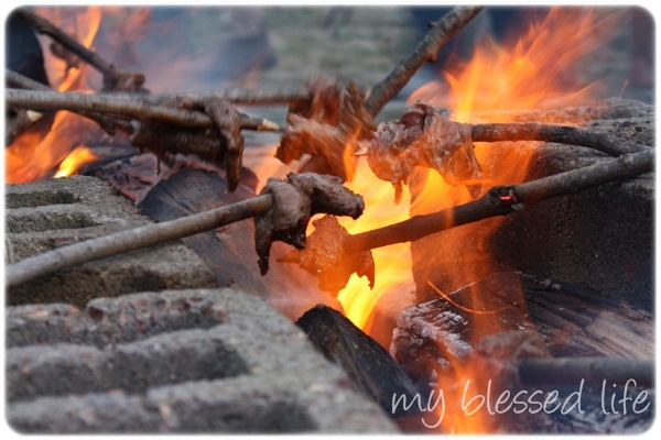 Image result for steak and a stick over fire photos