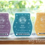 Scentsy Warmer & Bars {Giveaway}