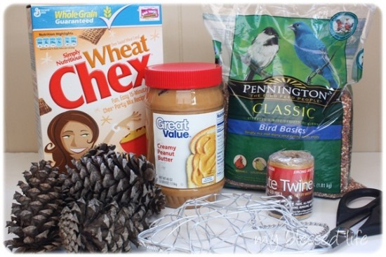 How To Make Bird Feeders With Peanut Butter