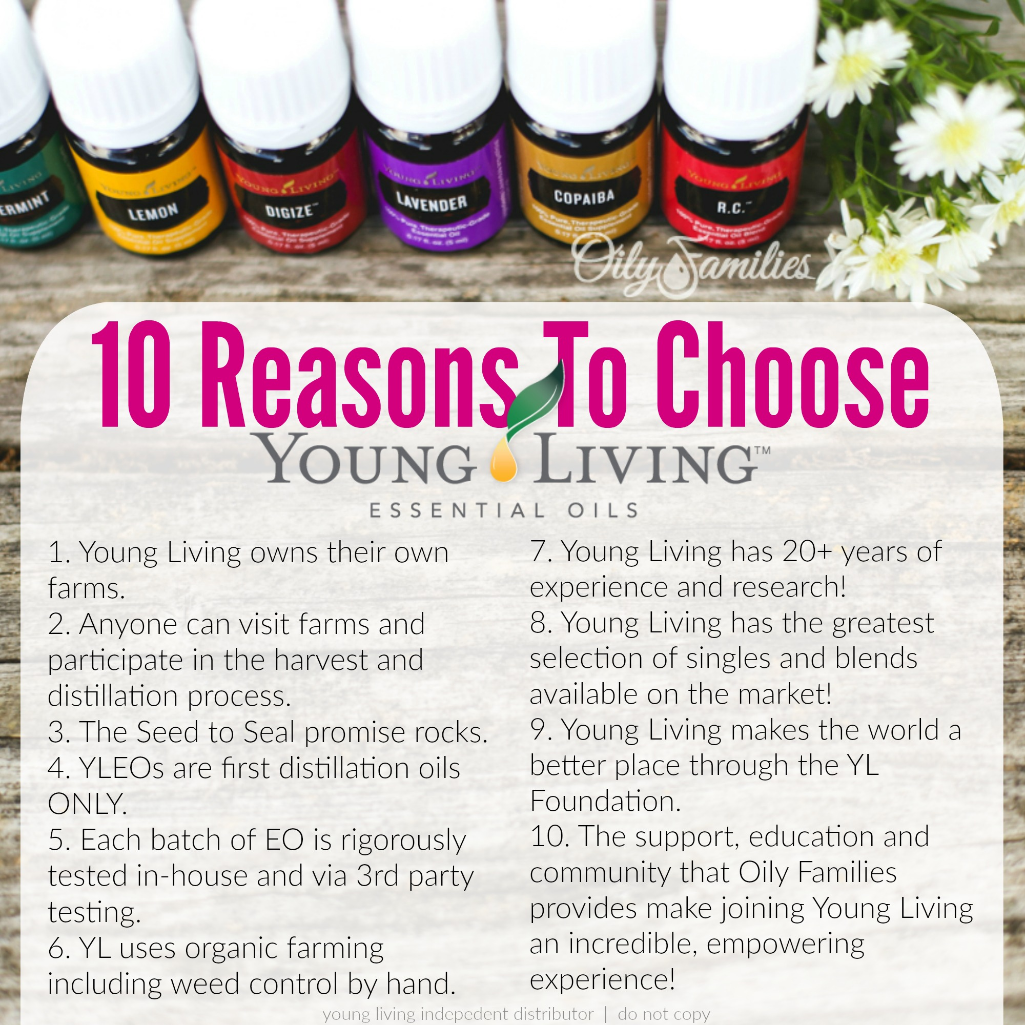 OF Choose YL New