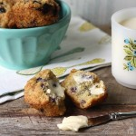 Blueberry Muffins Square