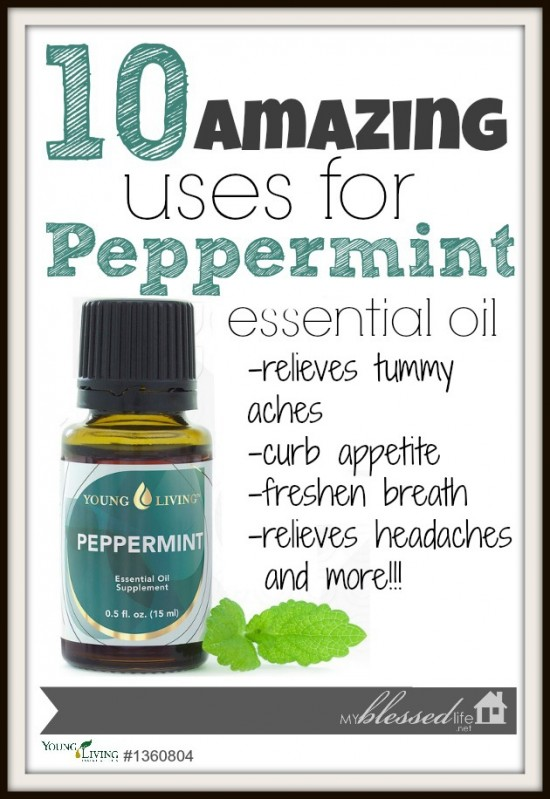 10 Amazing Uses for Peppermint Oil | MyBlessedLife.net