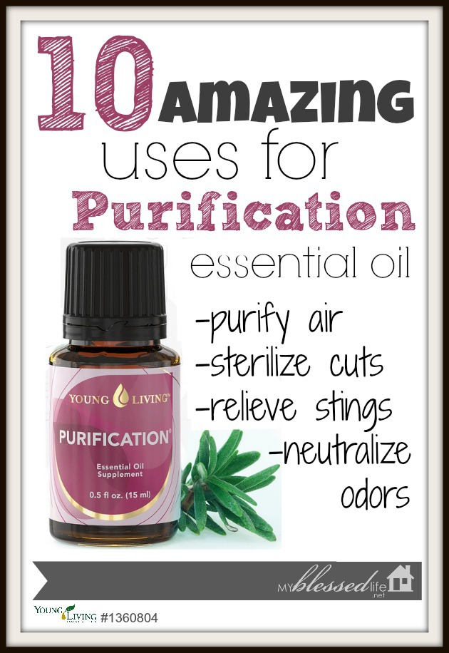 10 Amazing Uses for Purification Essential Oil | MyBlessedLife.net