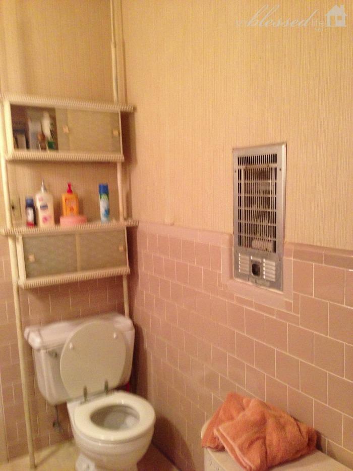 Bathroom Reno 3