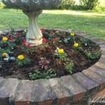 Flower Love & Spring Planting
