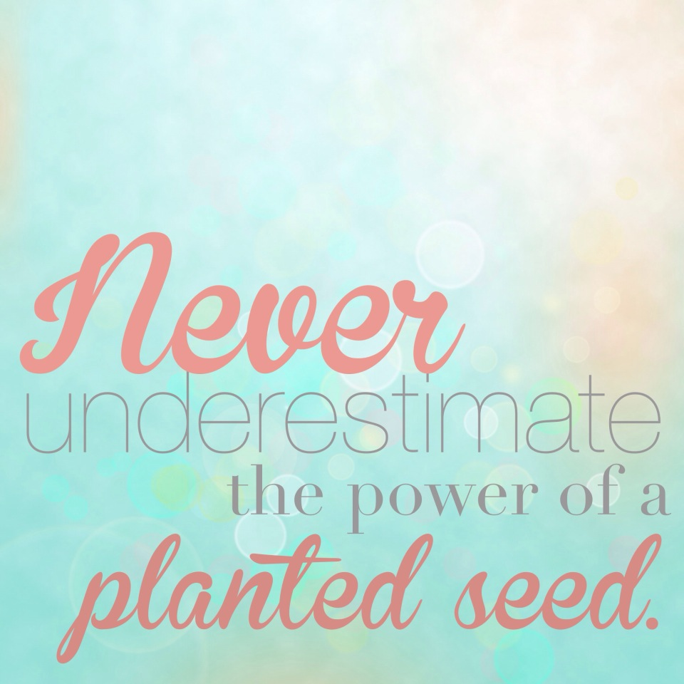 Quotes About Planting Seeds For Life The Power Of A Planted Seed And I'm Not Talking About Flower Seeds